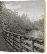 Water Path Wood Print