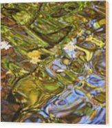 Water Prism Wood Print