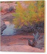 Magic Puddle At Canyon Lands Wood Print
