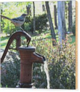 Water Pump Wood Print