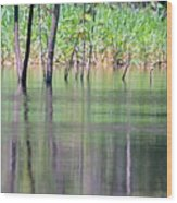 Water Reflections On Amazon River Wood Print
