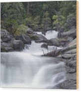 Water Running From The Woods Wood Print