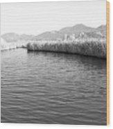 Water Scene In B And W Wood Print