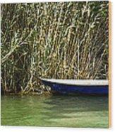 Water Scene Pano Wood Print