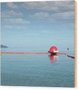 Water Slide Seascape Summer Vacation Scene Wood Print