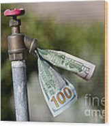 Water Spigot With Money Flowing Out Wood Print
