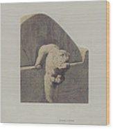 Water Spout, Sandstone Wood Print