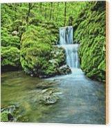 Water Stairs 2 Wood Print