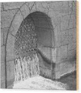 Water Stone Wood Print