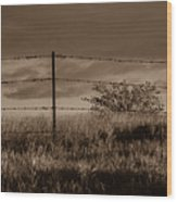 Water Tank On The Pasture  Wood Print