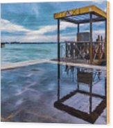 Water Taxi Wood Print
