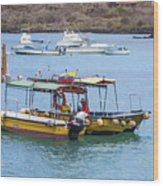 Water Taxis Waiting Wood Print