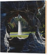 Water View Wood Print