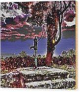 Water Well Kilkeasy, Kilkenny Wood Print