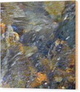 Water Whimsy 173 Wood Print