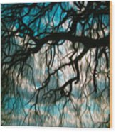 Water Willow Wood Print