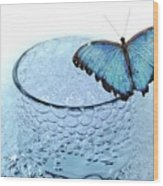 Water With Butterfly Wood Print