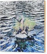 Water Woodwork Wood Print