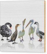 Waterbirds Wood Print