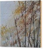 Watercolor 010104 Wood Print