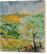 Watercolor 014091 Wood Print