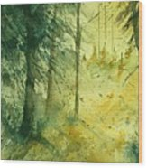 Watercolor  030106 Wood Print