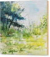 Watercolor 111141 Wood Print