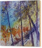 Watercolor  131108 Wood Print