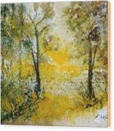 Watercolor 210108 Wood Print by Pol Ledent