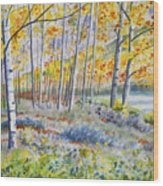 Watercolor - Colorado Autumn Forest And Landscape Wood Print
