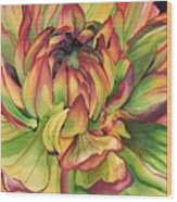 Watercolor Dahlia Wood Print