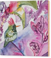 Watercolor - Frilled Coquette Hummingbird With Colorful Background Wood Print