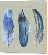 Watercolor Hand Painted Feathers Wood Print