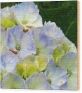 Watercolor Hydrangea Wood Print