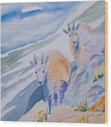Watercolor - Mountain Goats On Quandary Wood Print