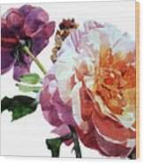 Watercolor Of Two Roses In Pink And Violet On One Stem That  I Dedicate To Jacques Brel Wood Print