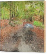 Watercolor Painting Of Beautiful Landscape Image Of Forest Covered In Autumn Fall Color Contrasting  Wood Print