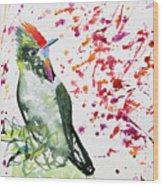 Watercolor - Rainbow Bearded Thornbill Wood Print