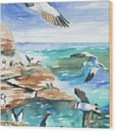 Watercolor - Seabirds Of The North Atlantic Wood Print