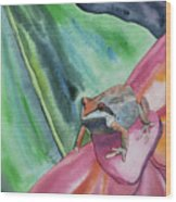 Watercolor - Small Tree Frog On A Colorful Flower Wood Print