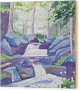 Watercolor - Summer Mountain Forest And Stream Wood Print