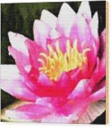 Watercolor Waterlily Wood Print