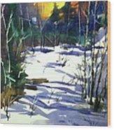 Watercolor3538 Wood Print