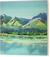 Watercolor4469 Wood Print