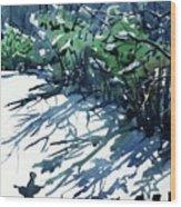 Watercolor4597 Wood Print
