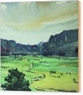 Watercolor4612 Wood Print