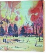 Watercolor4632 Wood Print