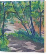 Watercress Beach On The Current River   Wood Print