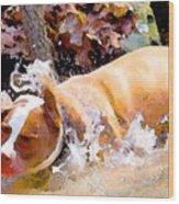 Waterdog Wood Print