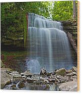 Waterdown Falls Wood Print